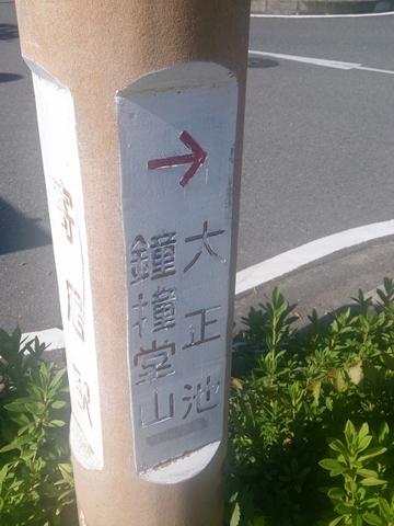 2 (481x640).jpg