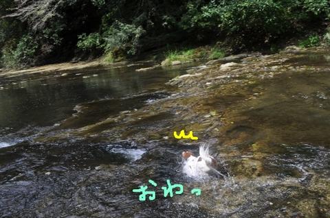 5ずんずん (640x425).jpg